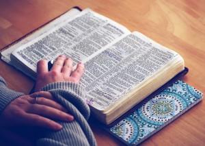 Escrituras biblicas