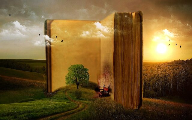 Como aprender lendo a fonte inesgotável