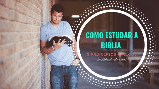 Como estudar a biblia